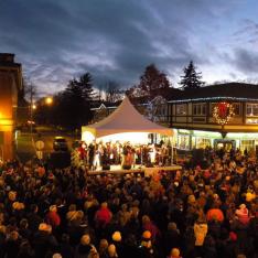 Oak Bay Village Christmas Light Up