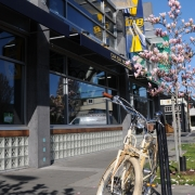 Oak Bay Bicycles